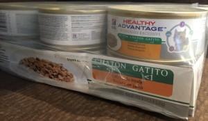 feed a new kitten healthy advantage