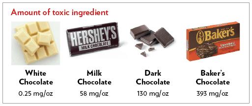 Chocolate Toxicity Chart